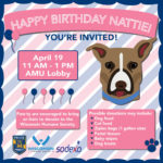 You're invited: Nattie's 2nd birthday party is April 19